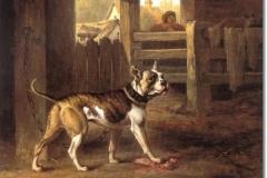 1803-dustman-bulterjeras