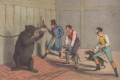 1820-4