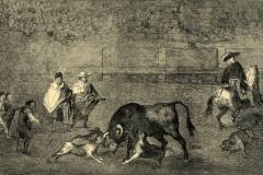 1828-Perros-al-toro-Francisco-De-Goya