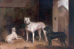 807I-Bulldogs-of-early-1800s