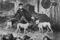 """Bulldog-painting""""-1843-Thomas-Clayton"""