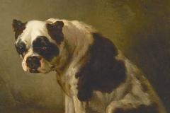 A-seated-bulldog-Wouterus-Verschuur-1812-1874