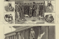 Cover-of-The-Graphic-22-December-1883-illustrating-the-Bull-Dog-Show