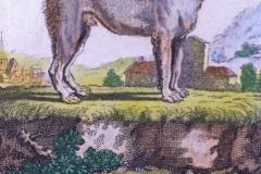1770-1795