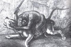1799-Samuel-Howit-pav