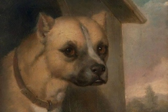 1851-Staffordshire-bull-terrier-belonging-to-the-Rev.-John-Gower-J.M.-Crossland