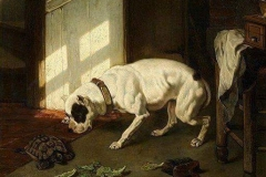 1854-Dog-and-Turtle-Joseph-Stevens