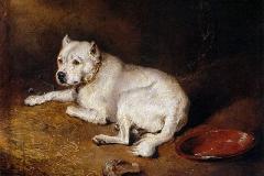 Staffordshire-Bull-Terrier-c.1850