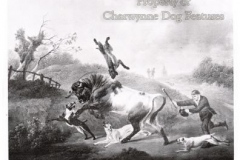 1800-24-1-BULL-BAITING-IN-THE-OPEN-COUNTRY-1800-CHARLES-TOWNE