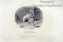 1812-178-2-Bull-and-terrier-Farmers-magazine-1812