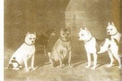 1880-2