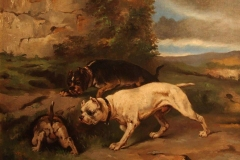 1880-trys-bull-and-terrier