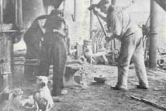JOE-MALLEN-dirba-su-dviem-šunimis-jo-pusėje