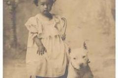 pitbull_21-1905