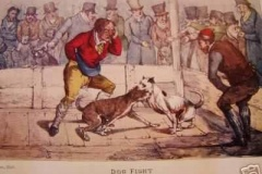 DOG-FIGHT-BY-Henry-Thomas-Alken-1824