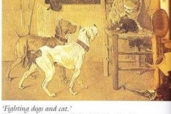 FIGHTING-DOGS-CAT19TH-CENTURY-PAINTING