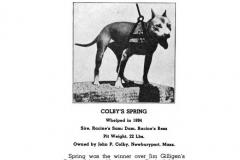 1894-colbys-spring