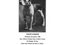 1896-colbys-major