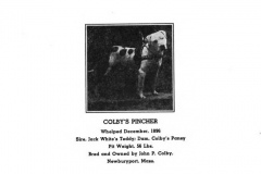 1896-colbys-pincher