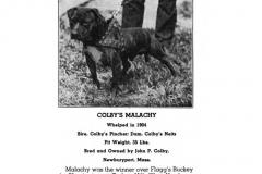 1904-colbys-malachy