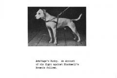 1914-armitages-bucky