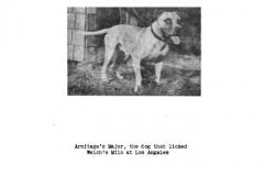 1922-armitages-major