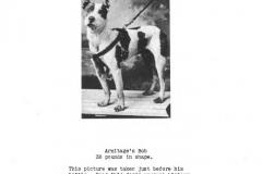 1928-armitages-bob