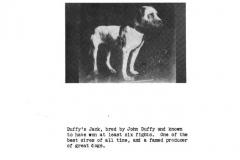 duffy-jack